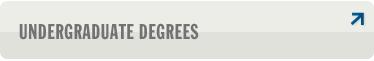 Undergraduate Degrees